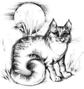 сказка кошка гулявшая сама по себе слушать