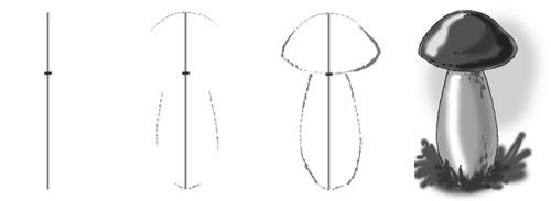 Схема рисование грибов